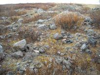 Каменные многоугольники, Воркутинский район