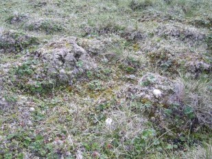 Frost heave on Yamal 3