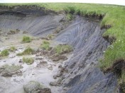 Thermoerosion on Yamal 2